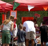 Community Fest