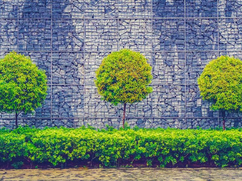 outdoor-trees